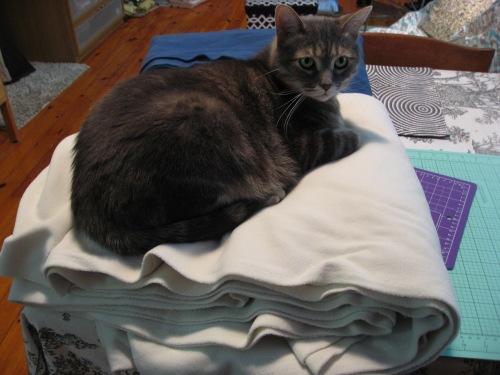 Kitty Cutting Fabric
