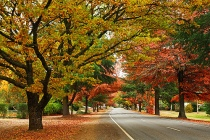 Autumn in Australia