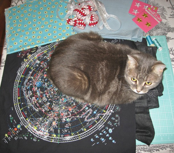 Fabric, Notions and Kitty, Ready to Go