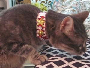 Kitty's Bowie Chevron Choker