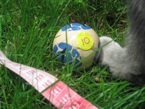 Kitty Randomly Selects Bocce Ball 10 from the Winners Circle