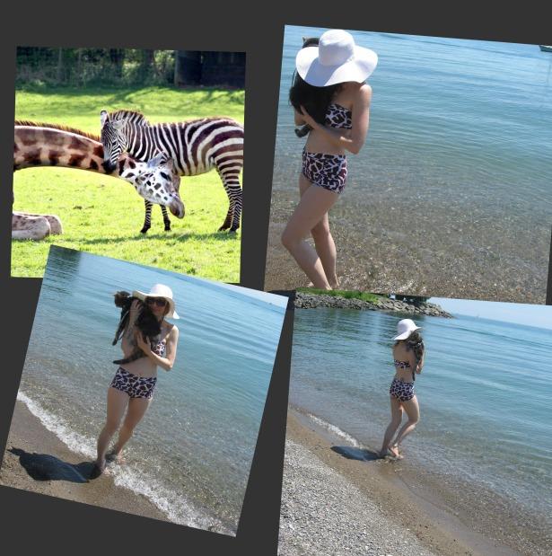 Jungle Boogie Swimsuit