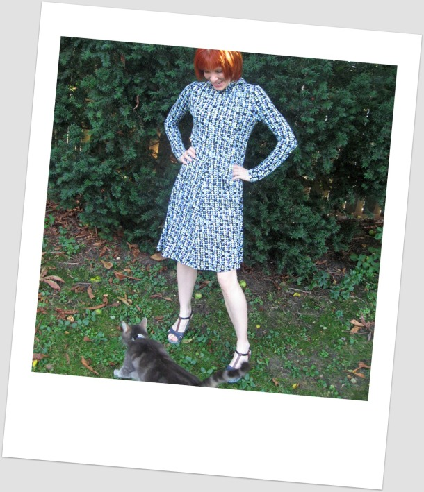 DVF blue knit dress cat bombed polaroid