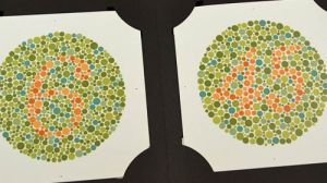 Red-Green Colour Blindness Test.  Can you read this?