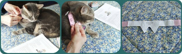 Measure Kitty Neck Adjust Pattern