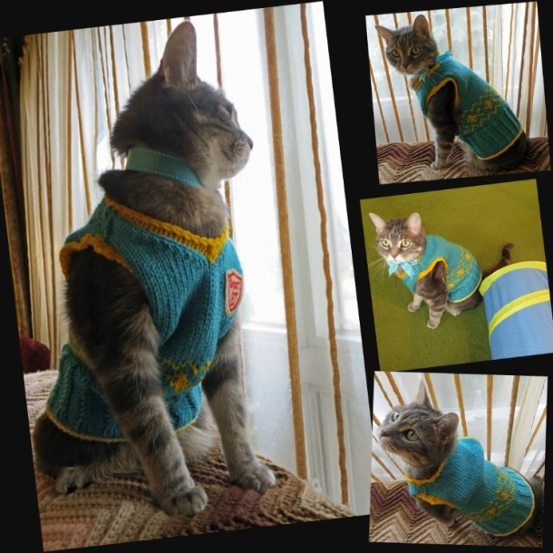 Cat Argyle Sweater Collage