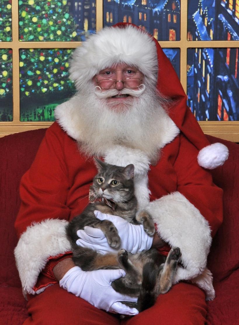 Leilande and Santa 2014